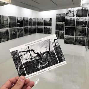 斎藤純彦さんの個展『Orchard』