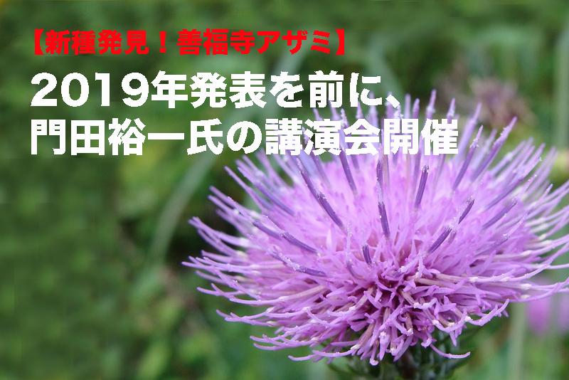 【新種発見!善福寺アザミ】2019年発表を前に、門田裕一氏の講演会開催