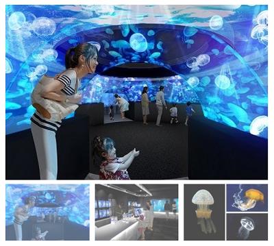 京都水族館のクラゲ新展示「クラゲワンダー」