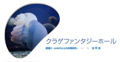新江ノ島水族館のクラゲ展示「クラゲファンタジーホール」が有名